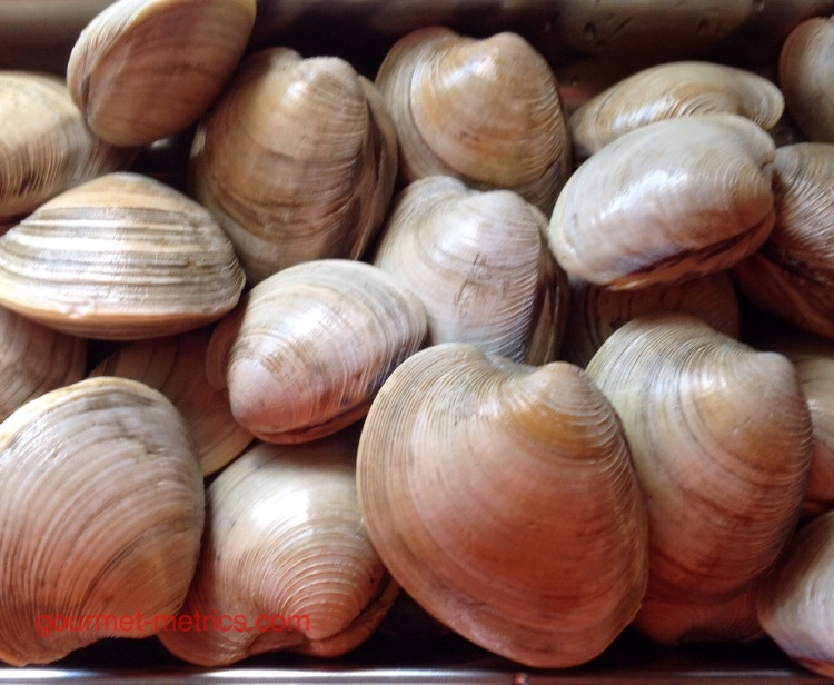 Long Island little neck clams